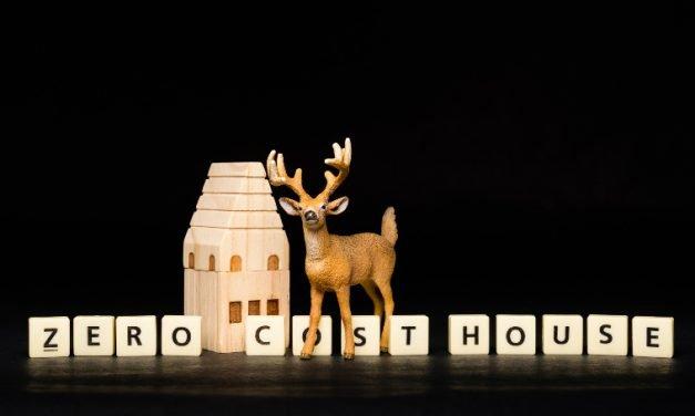 Zero Cost House